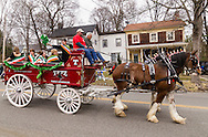 Goshen, New York - The Tetz Family Clydesdales head down North Church Street during the 40th annual Mid-Hudson St. Patrick's Parade on March 13, 2016. Grand marshall <br /> Sister Ann Daly is standing and waving a shamrock in the carriage.