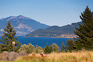 The view of the Columbia River Gorge from Skamania Lodge located in Washington's Columbia River Gorge