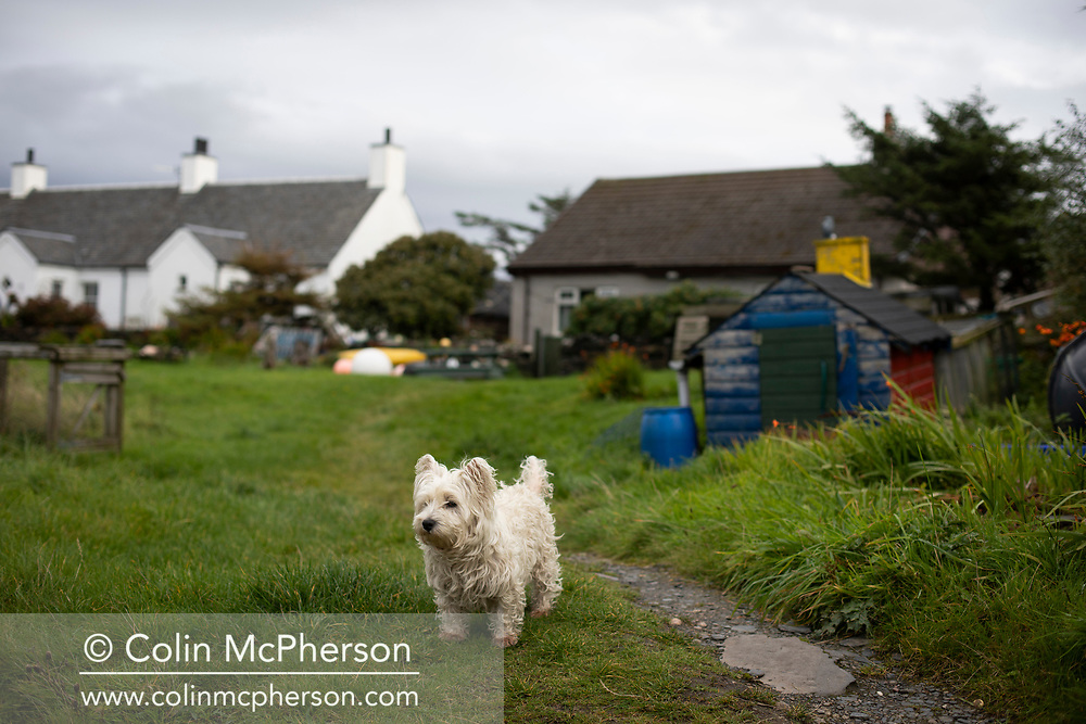 'Westie, 2018' from Colin McPherson's project 'Treasured Island' part of the Document Scotland exhibition entitled 'A Contested Land' which will launch at the Martin Parr Foundation, Bristol, on 16th January, 2019. McPherson's work was made in 2018-2019 on Easdale, the smallest permanently inhabited Inner Hebridean island and looks at the historical legacy of the island, once world famous for its slate mining industry.<br /> <br /> Photograph © Colin McPherson, 2018 all rights reserved.