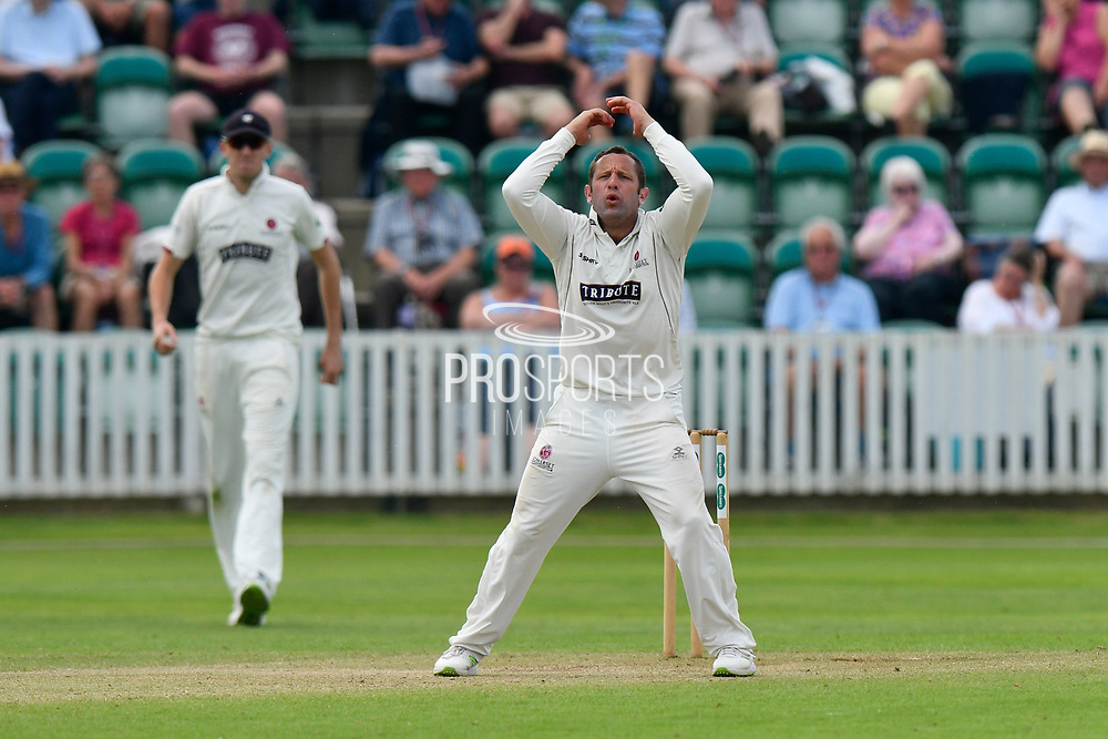 Roelof van der Merwe of Somerset looks frustrated while bowling during the Specsavers County Champ Div 1 match between Somerset County Cricket Club and Nottinghamshire County Cricket Club at the Cooper Associates County Ground, Taunton, United Kingdom on 10 June 2018. Picture by Graham Hunt.