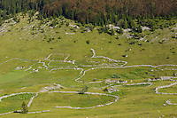 Abandoned grazing lands, now only for summer cottages, Alan, North Velebit National Park,  Velebit Nature Park, Rewilding Europe rewilding area, Velebit  mountains, Croatia