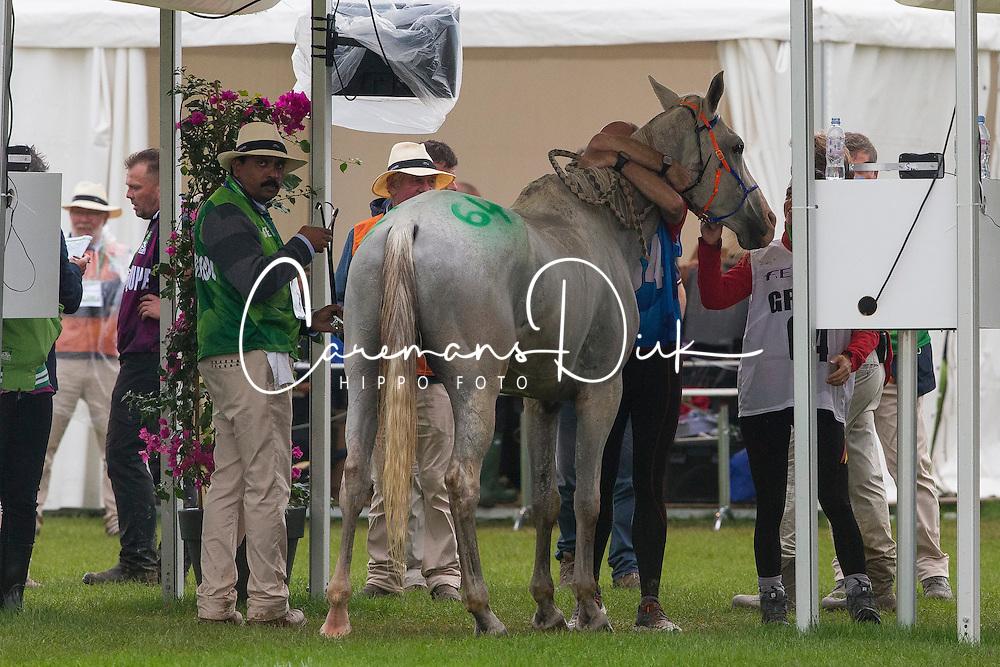 Jaume Punti Dachs, (ESP), Novisaad D Aqui - Endurance - Alltech FEI World Equestrian Games™ 2014 - Normandy, France.<br /> © Hippo Foto Team - Leanjo de Koster<br /> 25/06/14