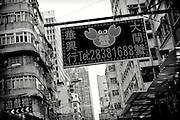 Hong Kong | HongKong | 02.12.2012 :  <br /> <br /> hier: Krabbe<br />   <br /> Sascha Rheker<br /> 20121202<br /> <br /> <br /> <br /> [Inhaltsveraendernde Manipulation des Fotos nur nach ausdruecklicher Genehmigung des Fotografen. Vereinbarungen ueber Abtretung von Persoenlichkeitsrechten/Model Release der abgebildeten Person/Personen liegt/liegen nicht vor.] [No Model Release | No Property Release]