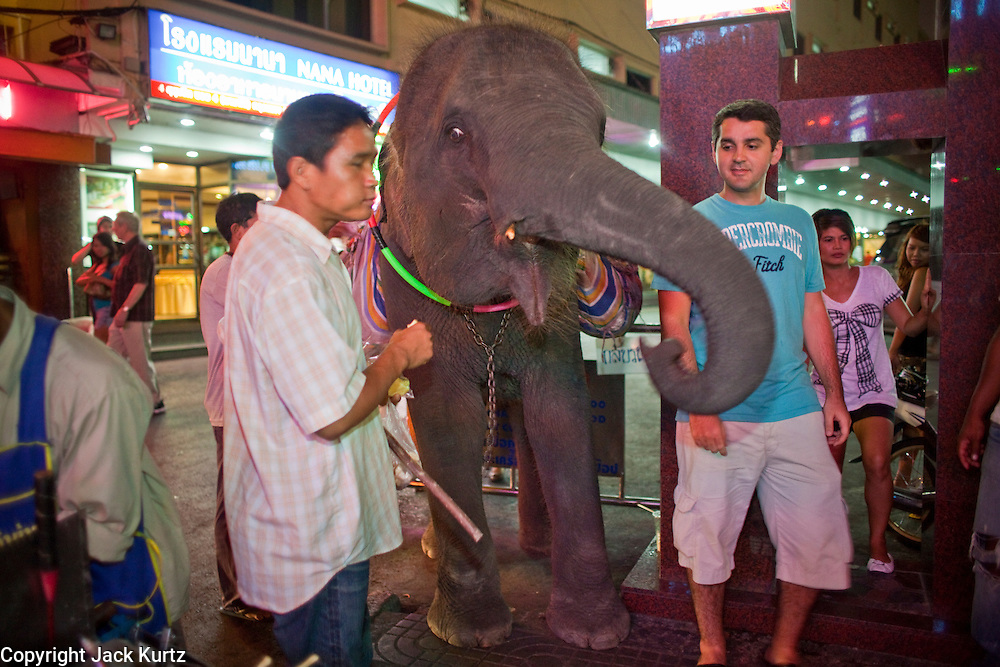 "Mar. 25, 2009 -- BANGKOK, THAILAND: Tourists pose for photos with a young elephant at the entrance to the Nana Entertainment Plaza on Soi Nana in Bangkok, Thailand. It has been illegal to bring elephants into Bangkok for about 10 years but police look the other way when the giants animals are brought into the ""entertainment"" districts, which are also the city's red light districts.  Photo by Jack Kurtz"