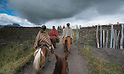 Horse riders pass through an agricultural gate high up in the Andes mountains of Ecuador.