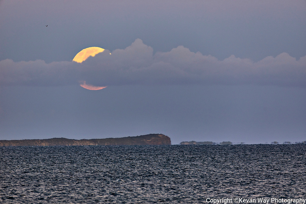 moonrise over Barwon Heads