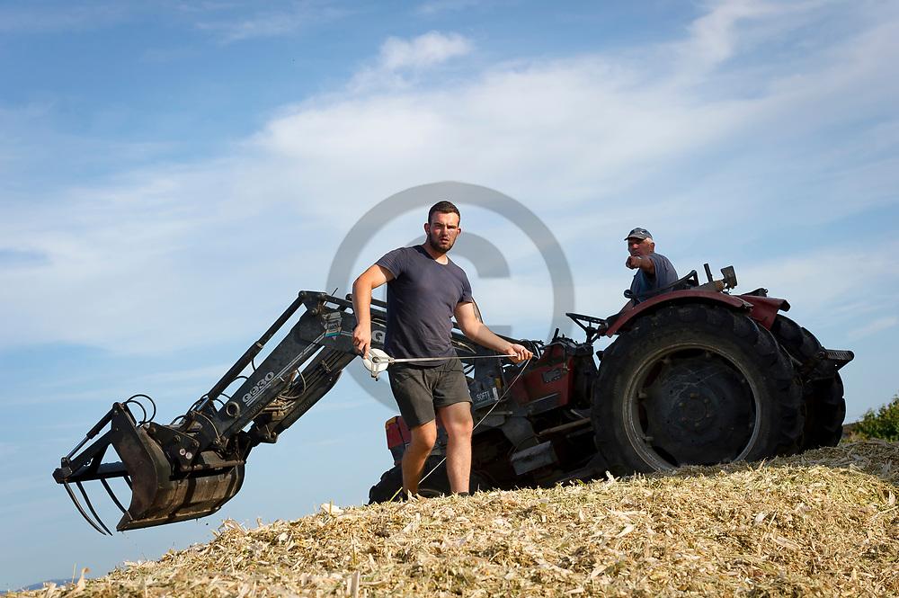 28/08/18 - CREVANT LAVEINE - PUY DE DOME - FRANCE - Tassage du silo d ensilage de mais - Photo Jerome CHABANNE