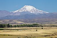 VOLCAN TUPUNGATO (6.550 a.s.n.m.) Y CULTIVOS, RUTA 89 CAMINO A POTRERILLOS, LA CARRERA KM 16,6, TUPUNGATO, PROVINCIA DE MENDOZA, ARGENTINA