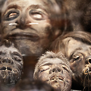 Shrunken heads at Ye Olde Curiosity Shoppe, Alaskan Way, Seattle, Washington