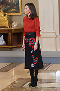 Queen Letizia of Spain attends an audience to a representation of the Federation of Cinematographic Distributors (FEDICINE) at Zarzuela Palace on January 14, 2020 in Madrid, Spain