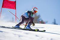 Gunstock Ski Club U14 Championship Giant Slalom.  ©2016 Karen Bobotas Photographer