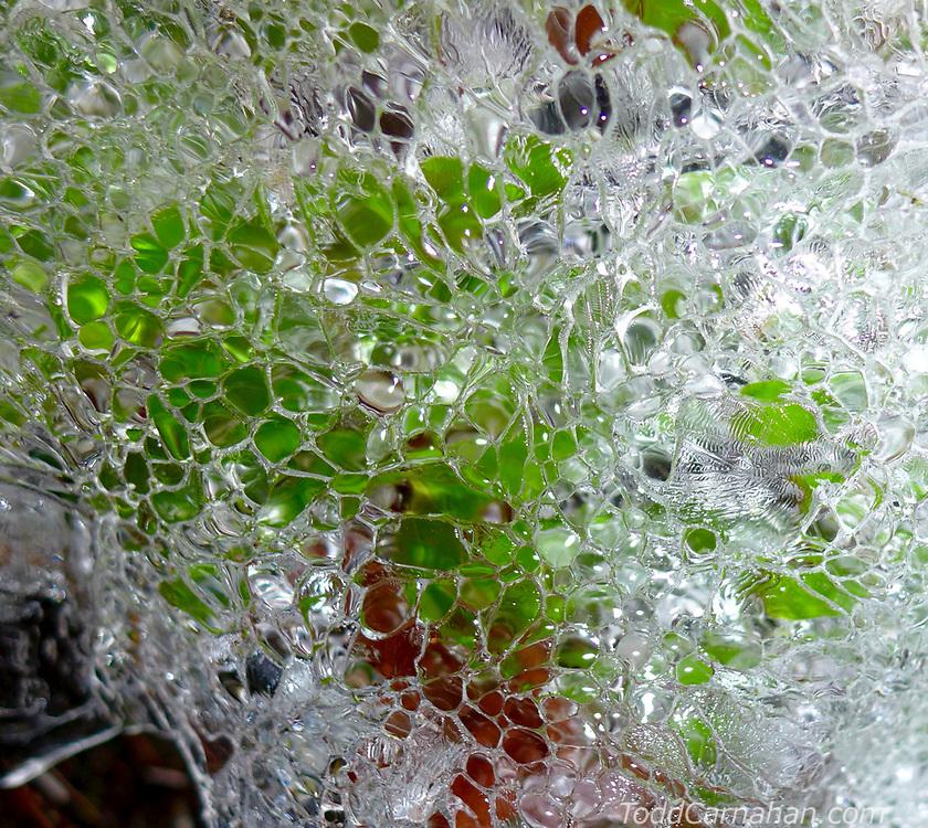 ice moss pattern
