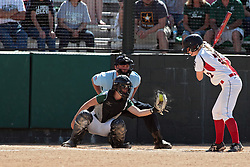 09 May 2014:  Sara Daley catches, Sam Ritsema bats during an NCAA Division III women's softball championship series game between the Lake Forest Foresters and the Illinois Wesleyan Titans in Bloomington IL