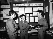 08/01/1988.01/08/1988.8th January 1988 .The Aer Lingus Young Scientist of the Year Award at the RDS, Dublin ..Three students (unkown) with a project entitled 'Life on our Windows.'
