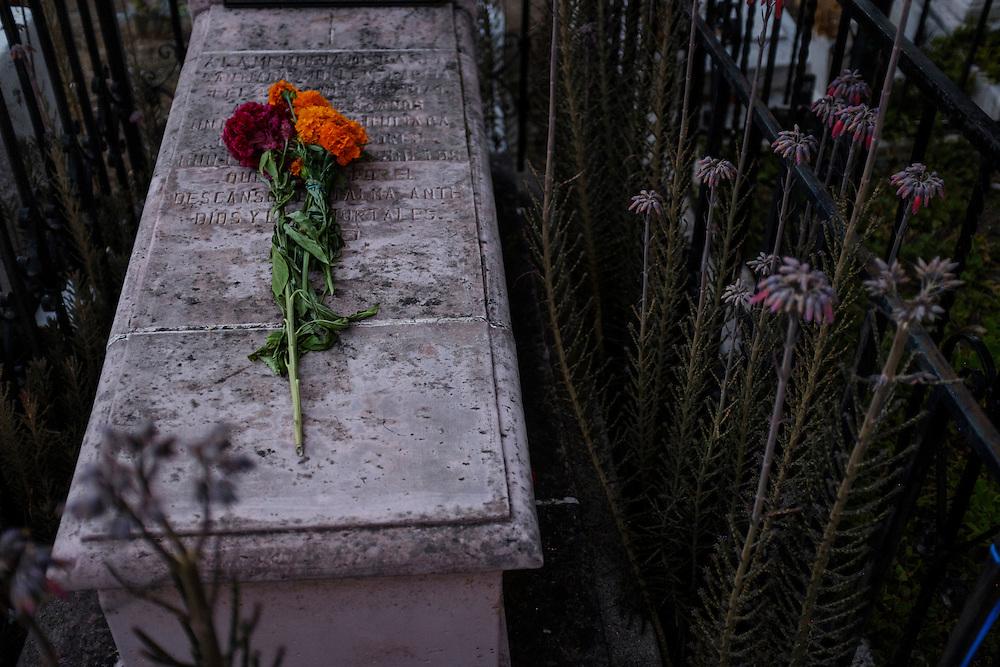 Dia del los Muertos, San Miguel de Allende, Mexico.