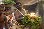 Udappuwa festival. The Kavadi dancers walk south along the main street to the Vishnu Kovil...The women may carry pots of burning camphor...They will dance in the compaund oppsote the shrine. they then enter the temple, where they are brought out of their trance by priests.