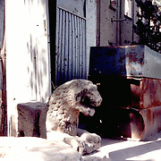 June 1995<br />