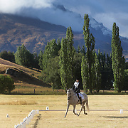 Anna-Marie Chin on Wilberforce in action during the Dressage event with the stunning backdrop of The Remarkables Mountain Range at the Wakatipu One Day Horse Trials,  Queenstown, Otago, New Zealand. 15th January 2012. Photo Tim Clayton