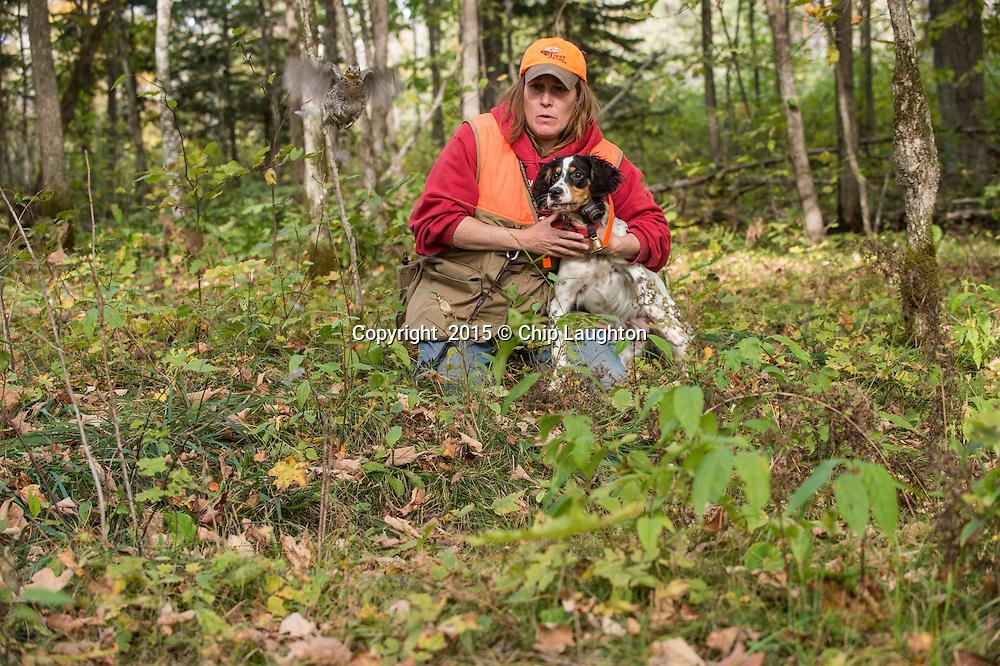 dog training stock photo image