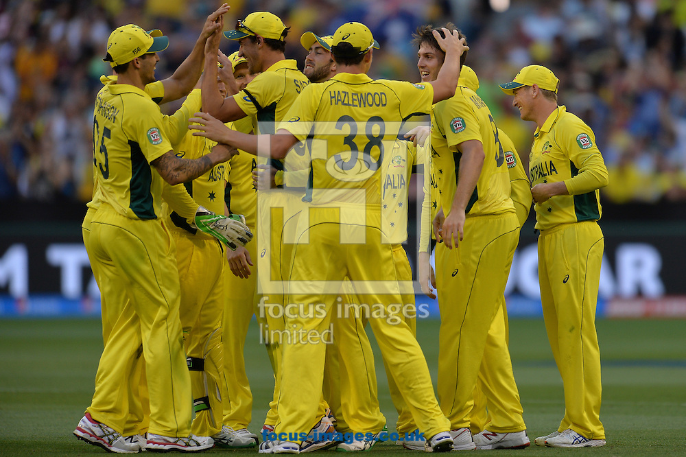 Mitchell Marsh of Australia celebrates with the team mates during the 2015 ICC Cricket World Cup match at Melbourne Cricket Ground, Melbourne<br /> Picture by Frank Khamees/Focus Images Ltd +61 431 119 134<br /> 14/02/2015