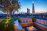 Olive trees underplanted with rosemary on London roof terrace, built-in benches, cushions, view to The Shard