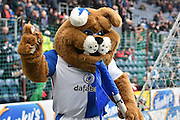 The Blackburn Rovers mascotduring the Sky Bet Championship match between Blackburn Rovers and Leeds United at Ewood Park, Blackburn, England on 12 March 2016. Photo by Mark Pollitt.