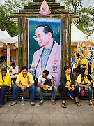 02 DECEMBER 2014 - BANGKOK, THAILAND: Thais sit under a portrait of Bhumibol Adulyadej, the King of Thailand, before the Trooping of the Colors, during a celebration of the King's Birthday. The Thai Royal Guards parade, also known as Trooping of the Colors, occurs every December 2 in celebration of the birthday of Bhumibol Adulyadej, the King of Thailand. The Royal Guards of the Royal Thai Armed Forces perform a military parade and pledge loyalty to the monarch. Historically, the venue has been the Royal Plaza in front of the Dusit Palace and the Ananta Samakhom Throne Hall. This year it was held on Sanam Luang in front of the Grand Palace.    PHOTO BY JACK KURTZ