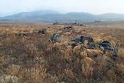 USA, Oklahoma, Wichita Mountains National Wildlife Refuge, Rocks and Mountains