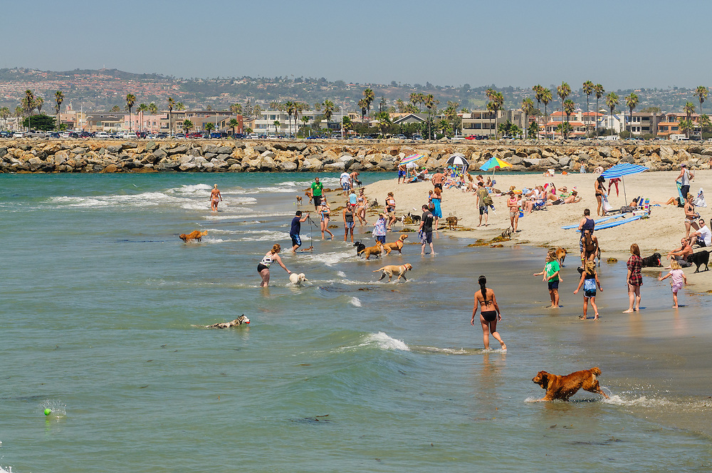 Dog Beach, Ocean Beach, west end of Voltaire St., San Diego, California
