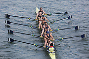 Crew: 204  Putney Town RC B<br /> <br /> Head of the River Race (HoRR) 2019<br /> <br /> To purchase this photo, or to see pricing information for Prints and Downloads, click the blue 'Add to Cart' button at the top-right of the page.