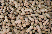 A pile of freshly unshelled roasted peanuts