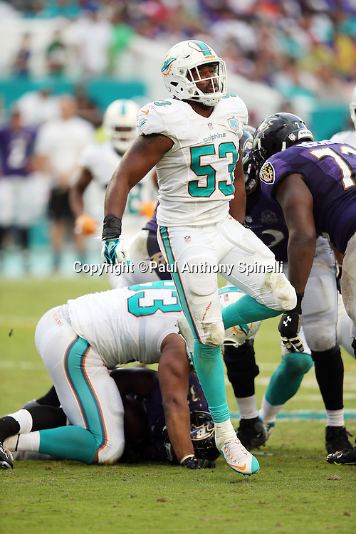 Miami Dolphins outside linebacker Jelani Jenkins (53) celebrates after the Dolphins stuff a key play during the 2015 week 13 regular season NFL football game against the Baltimore Ravens on Sunday, Dec. 6, 2015 in Miami Gardens, Fla. The Dolphins won the game 15-13. (©Paul Anthony Spinelli)