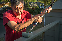 Socorro Gallardo paints the fence in front of their home in Calistoga.