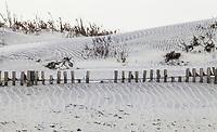 Sand dunes and a partially buried sand fence on the Atlantic coast of Assateague Island, Maryland, USA. Assateague Island National Seashore.