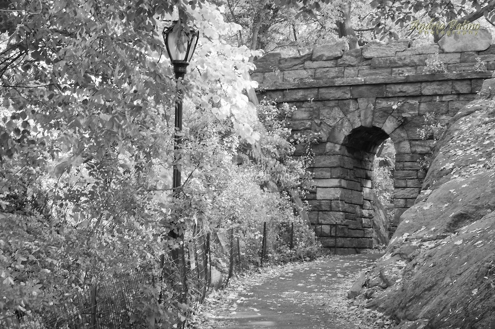 RAMBLE ARCH, Central Park