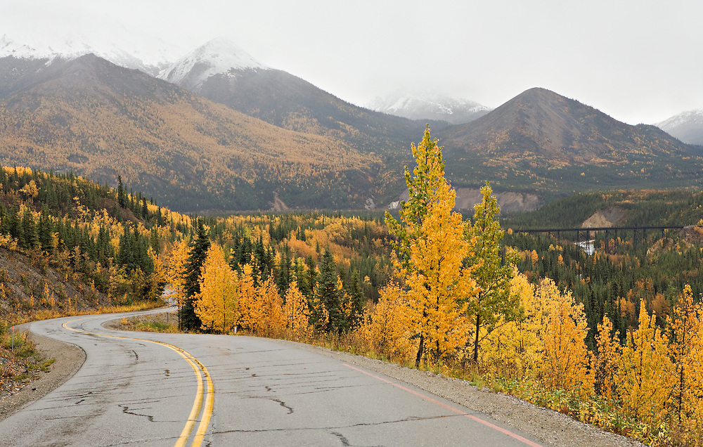 Snow begins to work its way down the mountaintops and brings to an end the fall season in Denali National Park, Alaska. Fall. Afternoon.