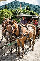 Charrete para passeios turísticos. Pomerode, Santa Catarina, Brasil. / Horse and cart for city tours. Pomerode, Santa Catarina, Brazil.