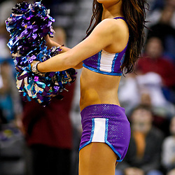 December 17, 2010; New Orleans, LA, USA; New Orleans Hornets Honeybees dancers perform during the second half of a game against the Utah Jazz at the New Orleans Arena.  The Hornets defeated the Jazz 100-71. Mandatory Credit: Derick E. Hingle