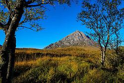 Buachaille Etive Mòr seen from the end of Glen Etive, Highlands of Scotland<br /> <br /> (c) Andrew Wilson | Edinburgh Elite media