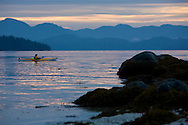 The cool morning light of overcast skies  shimmer on the calm waters and a sea kayaker paddling in Barkley Sound, BC.