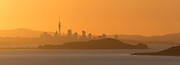 Panoramic (12x33 inch) of Auckland city silhouette at sunset.