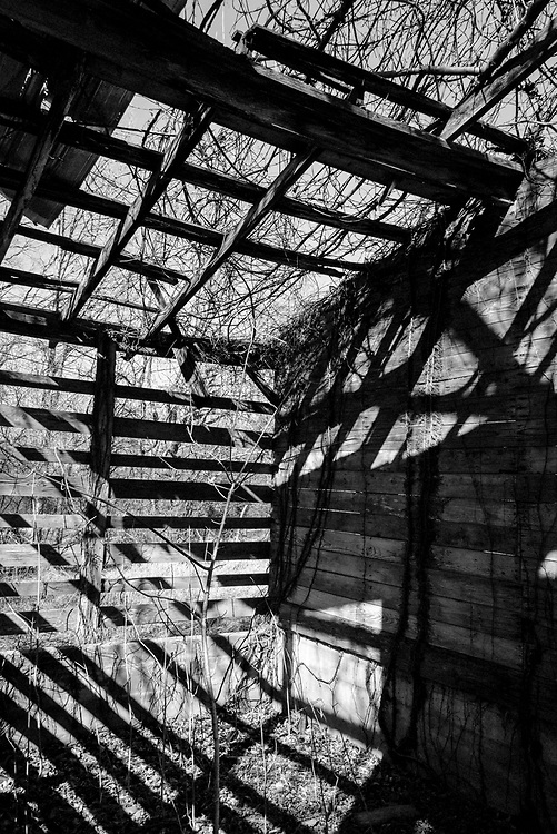 The late afternoon sun casts dramatic shadows across this decaying old barn.  The remaining frame, shadows, and background make for dramatic composition.