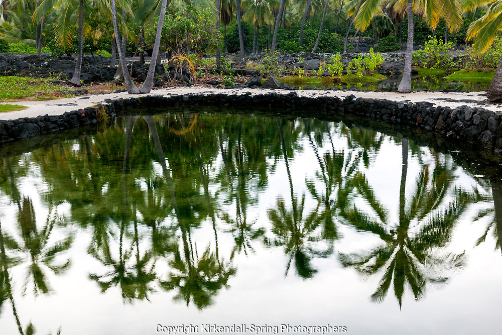 HI00239-00...HAWAI'I - Palm trees reflected in fish ponds at Pu'uhonua o Honaunau National Historic Park on the island of Hawai'i.