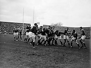 F ten Bos, Scottish forward, in possesion after line out,..Irish Rugby Football Union, Ireland v Scotland, Five Nations, Landsdowne Road, Dublin, Ireland, Saturday 24th February, 1962,.24.2.1962, 2.24.1962,..Referee- N M Parkes, Rugby Football Union, ..Score- Ireland 6 - 20 Scotland, ..Irish Team, ..F G Gilpin, Wearing number 15 Irish jersey, Full Back, Queens University Rugby Football Club, Belfast, Northern Ireland,..W R Hunter, Wearing number 14 Irish jersey, Right Wing, C I Y M S Rugby Football Club, Belfast, Northern Ireland, ..M K Flynn, Wearing number 13 Irish jersey, Right Centre, Wanderers Rugby Football Club, Dublin, Ireland, ..D Hewitt, Wearing number 12 Irish jersey, Left centre, Instonians Rugby Football Club, Belfast, Northern Ireland,..N H Brophy, Wearing number 11 Irish jersey, Left wing, Blackrock College Rugby Football Club, Dublin, Ireland, ..G G Hardy, Wearing  Number 10 Irish jersey, Stand Off, Bective Rangers Rugby Football Club, Dublin, Ireland,  ..J T M Quirke, Wearing number 9 Irish jersey, Scrum Centre, Blackrock College Rugby Football Club, Dublin, Ireland, ..S Millar, Wearing number 1 Irish jersey, Forward, Ballymena Rugby Football Club, Antrim, Northern Ireland,..A R Dawson, Wearing number 2 Irish jersey, Forward, Wanderers Rugby Football Club, Dublin, Ireland, ..R J McLoughlin, Wearing number 3 Irish jersey, Forward, University College Dublin Rugby Football Club, Dublin, Ireland, ..W A Mulcahy, Wearing number 4 Irish jersey, Captain of the Irish team, Forward, Bohemians Rugby Football Club, Limerick, Ireland,..W J McBride, Wearing number 5 Irish jersey, Forward, Ballymena Rugby Football Club, Antrim, Northern Ireland,..D Scott, Wearing number 6 Irish jersey, Forward, Malone Rugby Football Club, Belfast, Northern Ireland, ..M L Hipwell, Wearing number 8 Irish jersey, Forward, Terenure Rugby Football Club, Dublin, Ireland, ..M G Culliton, Wearing number 7 Irish jersey, Forward, Wanderers Rugby Football Club, Dublin, Ireland, ..Scottish Te