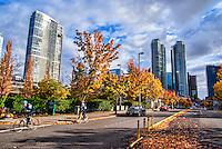 4th Street, Downtown Bellevue