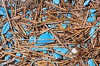 Long Island, New York, Shinnecock Harbor. Sticks and blue material.