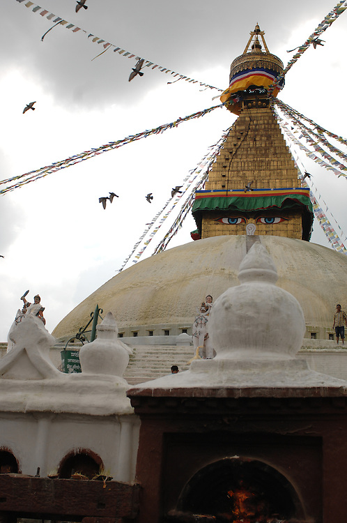 Birds flying over Boudhanath stupa in Nepal.