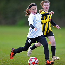 TELFORD COPYRIGHT MIKE SHERIDAN Action from AFC Telford United academy ladies/girls u11 vs Worthen Juniors at Idsall Sports Centre on Saturday, October 12, 2019.<br /> <br /> Picture credit: Mike Sheridan/Ultrapress<br /> <br /> MS201920-026