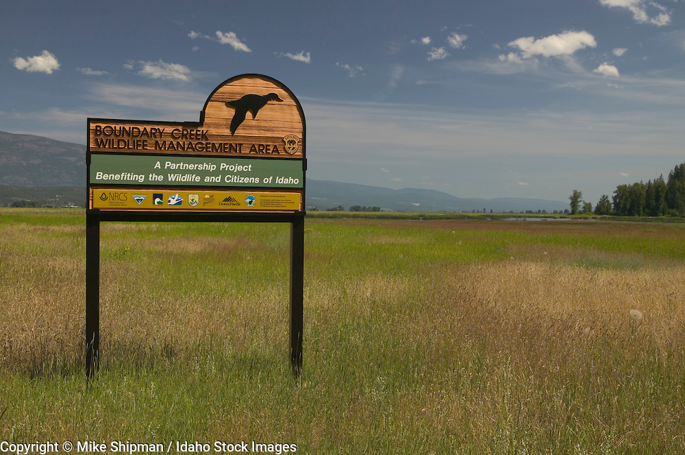 Boundary Creek Wildlife Management Area (WMA), Idaho Fish and Game, Purcell Trench, Boundary County, Idaho, USA