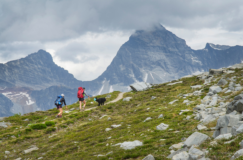 Two female hikers with black dog on Abbott Ridge Trail. Mount Sir Donald in the disatnce on right. Selkirk Mountains Glacier National Park British Columbia